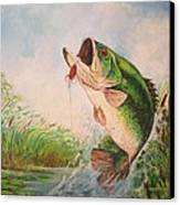 Largemouth Bass Canvas Print by Jose Lugo