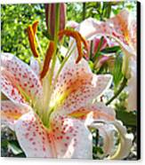 Lily Flowers Floral Prints Photography Orange Lilies Canvas Print by Baslee Troutman