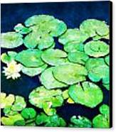 Lily Pads And Lotus Canvas Print by Tammy Wetzel