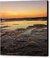 Lines Of Nature Canvas Print by Mark Lucey