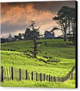 Long Bay Fields Canvas Print by Mark Meredith