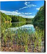 Long Branch Lake Marsh Canvas Print by Adam Jewell