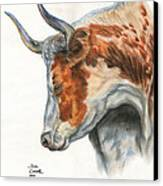 Longhorn Canvas Print by Jana Goode