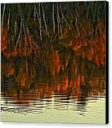 Loon In Opeongo Lake With Reflection Canvas Print by Robert Postma
