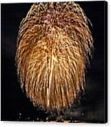 Lopez Island Fireworks 1 Canvas Print by David Salter