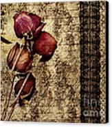 Love Letter Canvas Print by VIAINA Visual Artist