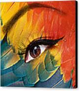 Macaw Canvas Print by Yosi Cupano
