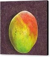 Mango On Plum Canvas Print by Steve Asbell
