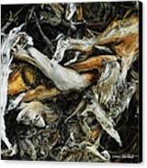 Mass Grave Canvas Print by Donna Blackhall