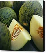 Melons Canvas Print by David Munns