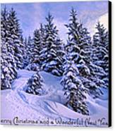 Merry Christmas And A Wonderful New Year Canvas Print by Sabine Jacobs