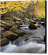Mid Stream Canvas Print by Charles Warren