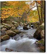 Mid Stream II Canvas Print by Charles Warren