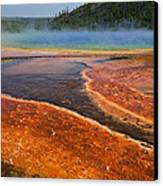 Middle Hot Springs Yellowstone Canvas Print by Garry Gay