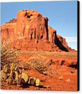 Monument Valley Cactus Canvas Print by Jane Rix