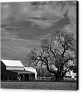 Moon Lit Farm Canvas Print by Todd Hostetter