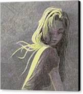 Moonlight Canvas Print by Steve Asbell