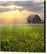 Morning Has Broken Canvas Print by Debra and Dave Vanderlaan