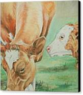 Mother And Baby Canvas Print by Teresa Smith