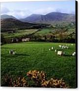 Mourne Mountains From Trassey Road, Co Canvas Print by The Irish Image Collection