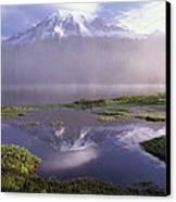 Mt Rainier An Active Volcano Encased Canvas Print by Tim Fitzharris
