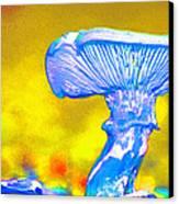 Mushroom Whimsy  Canvas Print by Marie Jamieson