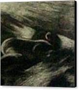 Mutual Admiration Canvas Print by Olga Klinger