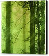 Mystical Glade Canvas Print by Judi Bagwell