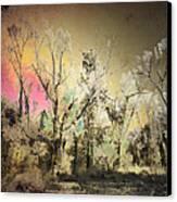 No. 10 Peyote Place Canvas Print by Arne Hansen
