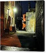 No Alley Cats Tonight Canvas Print by Jan Amiss Photography