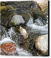 Oak Creek Canvas Print by Lauri Novak