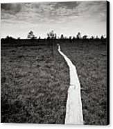 On The Swamp Canvas Print by Konstantin Dikovsky