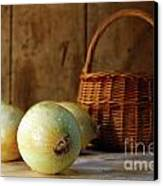 Onions On The Counter Canvas Print by Sandra Cunningham