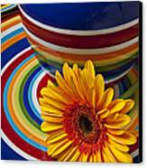 Orange Daisy With Plate And Vase Canvas Print by Garry Gay