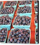Organic Blackberries Canvas Print by Wendy Connett