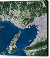 Osaka, Satellite Image Canvas Print by Planetobserver