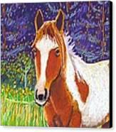Paintchip Canvas Print by Harriet Peck Taylor