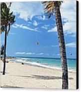Palm Trees On Ocean Park Beach Canvas Print by George Oze