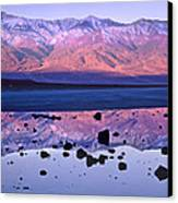 Panamint Range Reflected In Standing Canvas Print by Tim Fitzharris