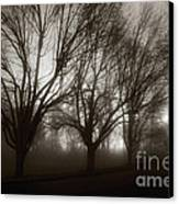 Park In Fog Canvas Print by Susan Isakson