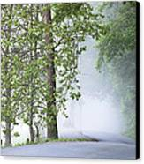 Path Into The Fog Canvas Print by Andrew Soundarajan