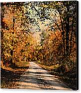 Path To Nowhere Canvas Print by Jai Johnson
