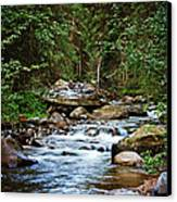 Peaceful Mountain River Canvas Print by Lisa Holmgreen