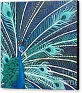 Peacock Canvas Print by Estephy Sabin Figueroa