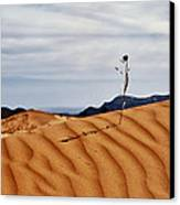 Perseverance Canvas Print by Stephen Campbell