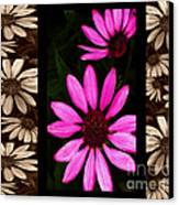 Petal Collage Canvas Print by Cheryl Young