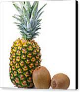 Pineapple And Kiwis Canvas Print by Carlos Caetano