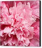 Pink Canvas Print by Kristin Elmquist