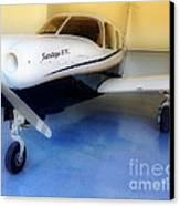 Piper Saratoga Canvas Print by Cheryl Young