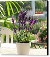 Plastic Lavender Flowers  Canvas Print by Nawarat Namphon
